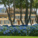 Château d'Esclans Côtes-de-Provence: el líder mundial en vinos rosados de lujo se une a Moët Hennessy