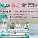 Xinhua Silk Road: Guilin, en el sur de China, presenta eventos para celebrar el Día del Patrimonio Cultural y Natural
